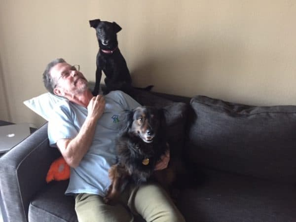 Man with two dogs on a couch