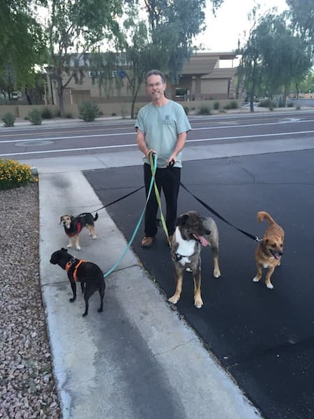 philip walking four dogs
