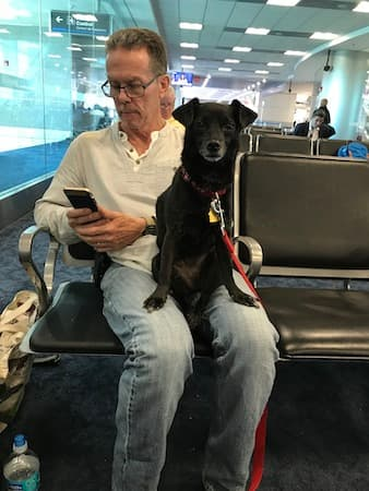 philip with his dog on their way to ecuador