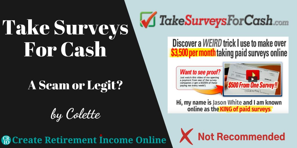 Featured Image for Take Surveys for Cash Showing Company Logo and a Thumbnail of a Promotional Video