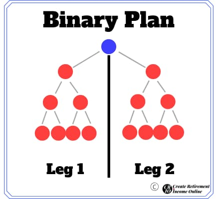 total life changes review binary plan illustration