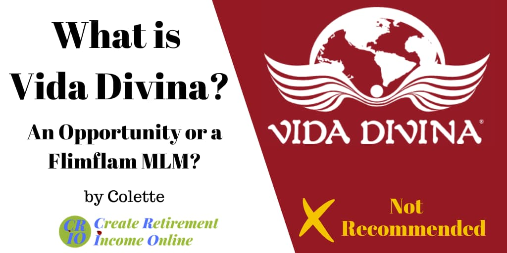 feature image for what is vida divina showing company logo