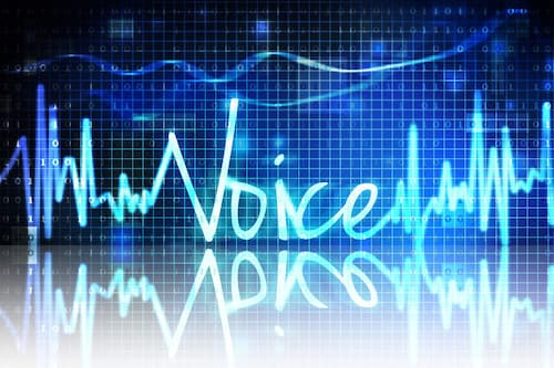 the word voice in neon lights